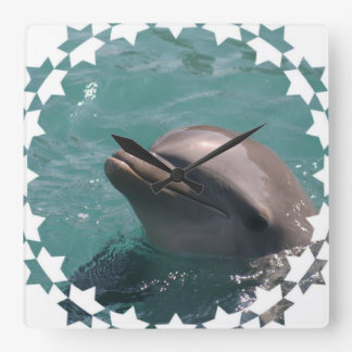 Starring a Dolphin Wall Clock
