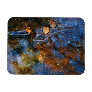 Starry Autumn Reflections Magnet