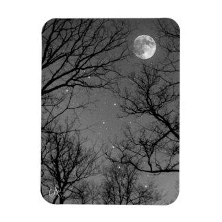 Starry Moonlit Night Rectangular Photo Magnet
