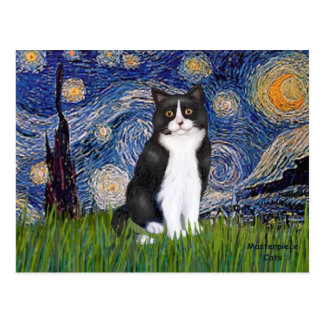 Starry Night - Black and White Cat Postcard