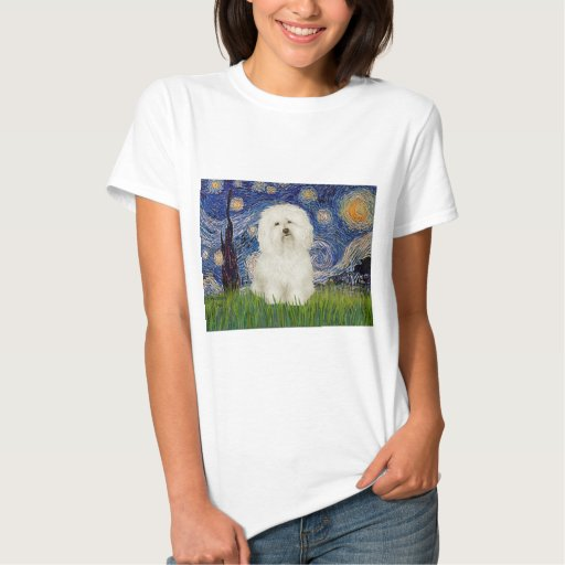 Starry Night - Bolognese 1 T Shirts