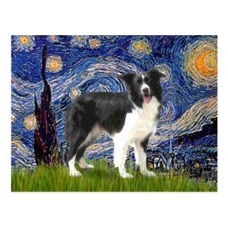 Starry Night - Border Collie (Z) Postcard