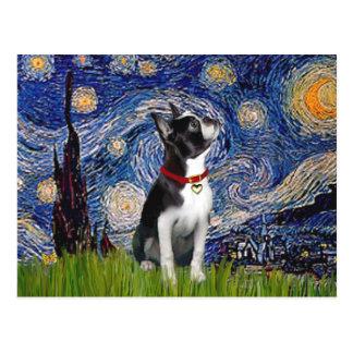 Starry Night - Boston T (2rc) Postcard