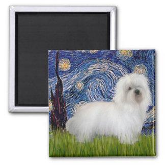 Starry Night - Coton de Tulear 5 2 Inch Square Magnet