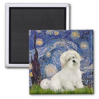 Starry Night - Coton de Tulear 7 Fridge Magnets
