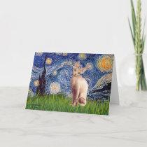 Starry Night - Cream Sphynx Cat Card