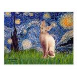 Starry Night - Cream Sphynx Cat Post Cards