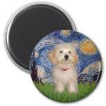 Starry Night - Havanese Puppy 2 Inch Round Magnet