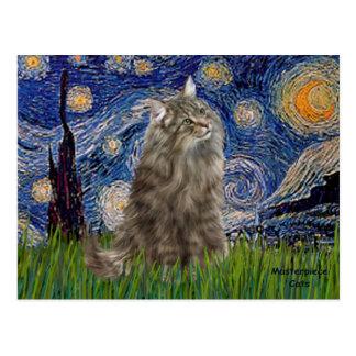 Starry Night - Norwegian Forest Cat Postcard