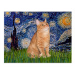 Starry Night - Orange Tabby 46 Postcard