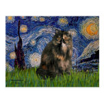 Starry Night - Persian Calico cat Post Card