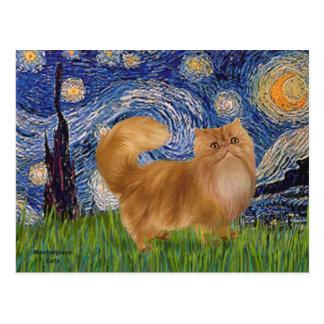 Starry Night - Red Persian cat Postcard