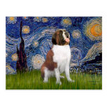 Starry Night- Saint Bernard Postcard