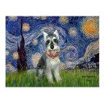 Starry Night - Schnauzer #8 Post Card