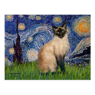 Starry Night - Seal Point Siamese cat Postcard