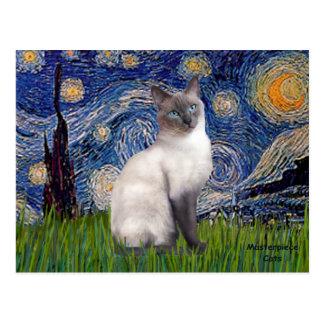 Starry Night - Siamese 24 (blue point) Postcard