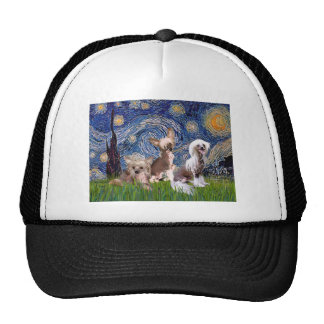 Starry Night - Three HL Chinese Cresteds Hat