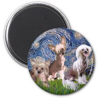 Starry Night - Three HL Chinese Cresteds Magnets
