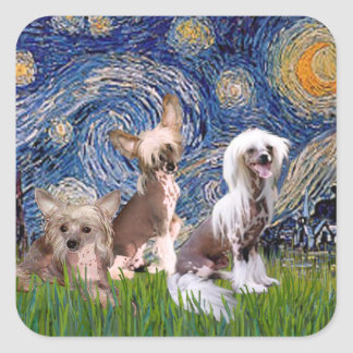Starry Night - Three HL Chinese Cresteds Square Stickers