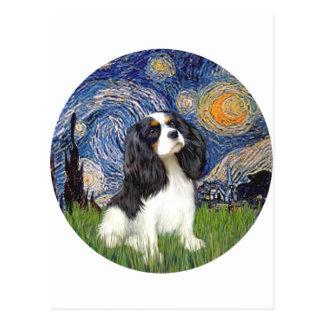Starry Night - Tri Cavalier #5 Postcard