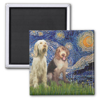 Starry Night - Two Italian Spinones 2 Inch Square Magnet