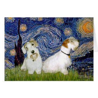Starry Night - Two Sealyham Terriers Card