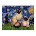 Starry Night - Two Siamese cats (Choc Pt) Post Card