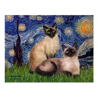 Starry Night - Two Siamese cats (Choc Pt) Postcard