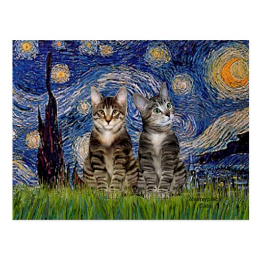 Starry Night - Two Tabby Tiger Cats Postcard