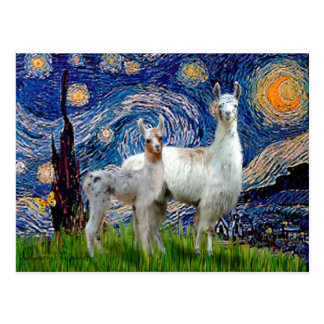 Starry Night with Two Llamas Postcard