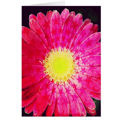Starry Pink Gerbera Daisy Blank Greeting Card