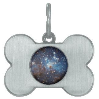 Starry Sky Pet Name Tags