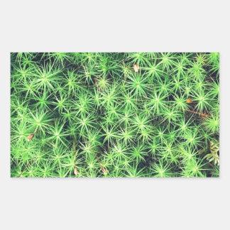 Starry starry moss rectangular sticker