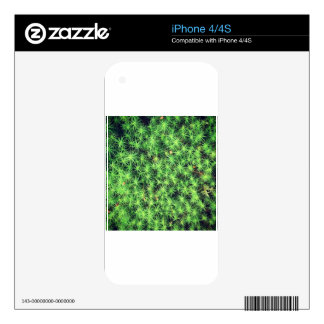 Starry starry moss skins for the iPhone 4S