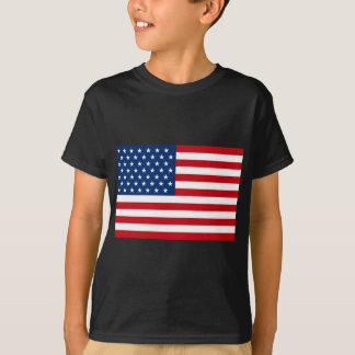 Stars and Stripes USA T-Shirt