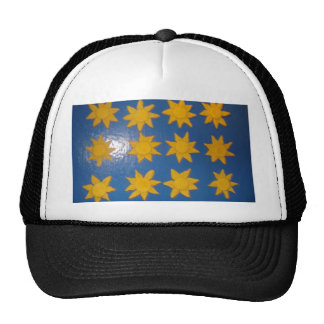 STARS FOR A SUNNY DAY TRUCKER HAT