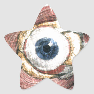 Stars in Your Eyes Star Sticker