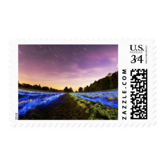 Stars Neon Lights Night Sky Field Starry Stamp