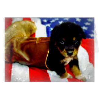Stars Spangled Puppy Card