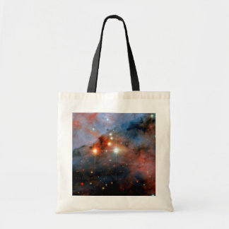 Stars WR 25 & Tr16-244 in Carina Nebula Canvas Bags