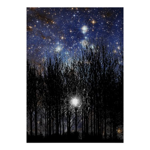 Starscape & Trees - Poster