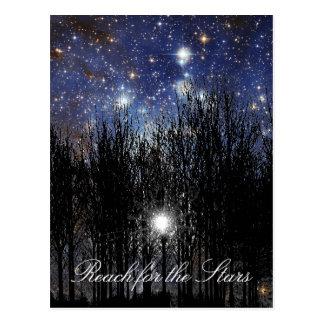Starscape & Trees: Reach - Postcard