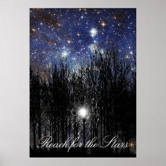 Starscape y árboles: Alcance - poster