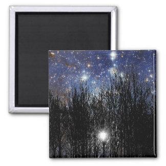 Starscape y árboles - imán #1