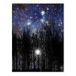 Starscape y árboles - postal
