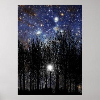 Starscape y árboles - poster