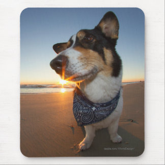 StarStruck at the Beach Mouse Pad