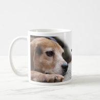 Start Your Day the Beagle Way Coffee Mugs