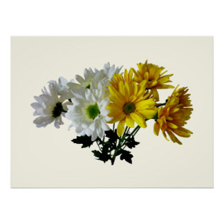 STARTING UNDER $20 - Bouquet Yellow  White Daisies Poster