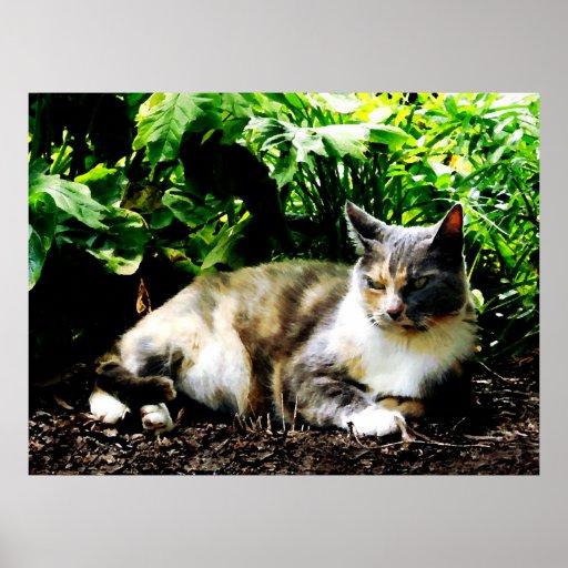 STARTING UNDER $20 - Cat Relaxing in Garden Print